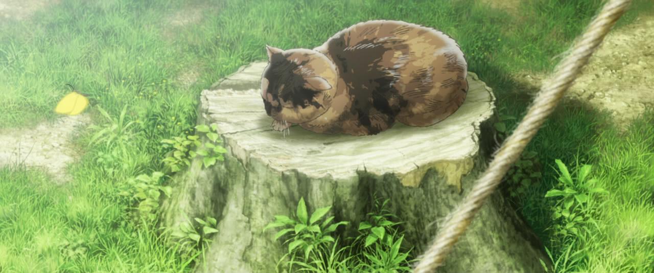 Fanservice a cica fanoknak, mert a véres háborúnál csak az alvó cicák édesebbek a szemnek.